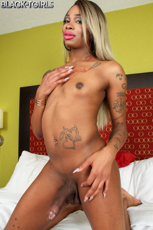Holly Strokes Transsexual