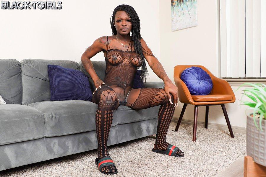 Sweet Big Cock Black Tgirl Erica