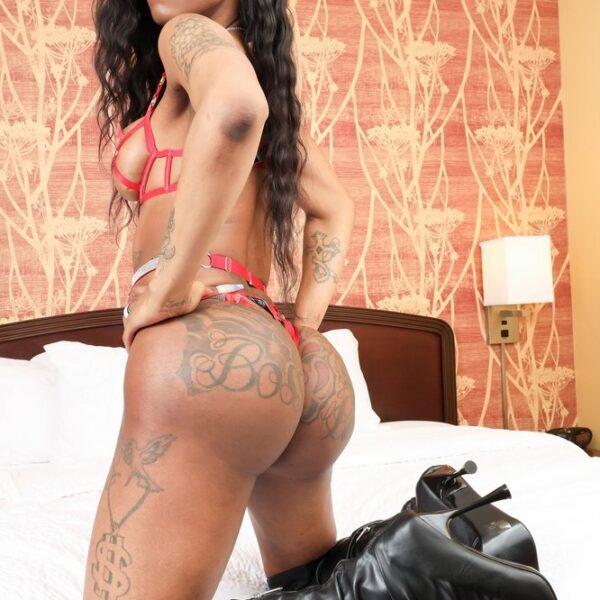 Juicy Bunz Hot Black Tgirl