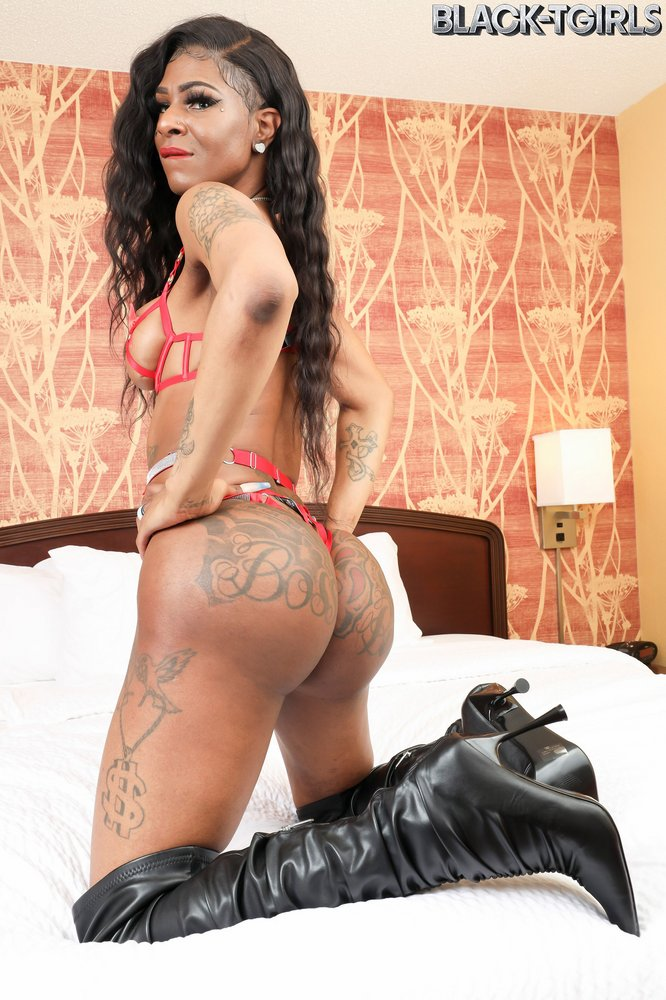 Juicy Bunz Hot Black Tgirl